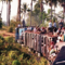 A train fully laden with passengers snakes its way through the jungle on the route from Phnom Penh to Sihanoukville in 1998
