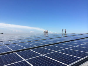 Impact Solar provides solar rooftop solutions for factories, buildings and shopping malls to capitalise on the rising renewal energy trend.